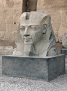 Sculpture at luxor temple in egypt a pharaonic the ancient africa Stock Photography
