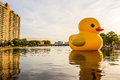 Sculpture `Rubber Duck` in Norfolk, Virginia