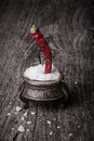 Sea ​​salt in a large antique salt shaker and hot red pepper on old wooden table Royalty Free Stock Photo