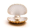 Sea ​​shell with pearl Royalty Free Stock Photo