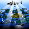 Sea abyss stylized fish background landscape of the with fishes algae and urchins Stock Photography