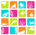 Sea animals Stock Photos