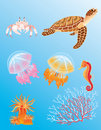 Sea animals Royalty Free Stock Image