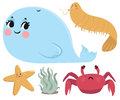 Sea animals collection vector illustration of a couple cartoon from the each animal is in an isolated group Royalty Free Stock Images
