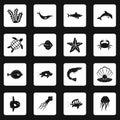 Sea animals icons set squares vector