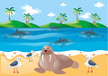 Sea animals and pigeons on the beach