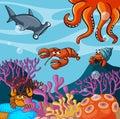 Sea animals under the ocean