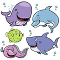 Sea animals vector illustration of collection Royalty Free Stock Images