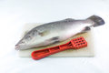 Sea bass and fish scaler on a cutting board. Royalty Free Stock Images