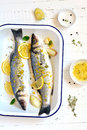 Sea bass with lemon and thyme Royalty Free Stock Photo