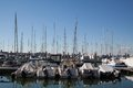 Sea bay with boats and yachts Royalty Free Stock Photography