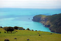Sea bay view rural area banks peninsula new zealand Royalty Free Stock Images