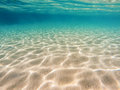 Sea bottom seen from underwater Royalty Free Stock Image