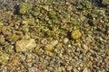 Sea bottom smooth beach stone background texture Royalty Free Stock Image
