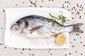 Sea bream, mediterranean style. Royalty Free Stock Image