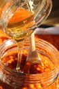 Sea buckthorn with raw honey great for boosting the immune system Royalty Free Stock Photography