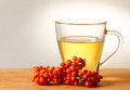 Sea buckthorn tea berries on the glass Royalty Free Stock Photography