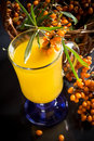 Sea buckthorn tea in a cup on a black background Royalty Free Stock Photo