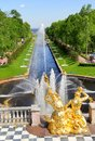 Sea channel in peterhof palace the grand cascade and saint petersburg russia Stock Photography