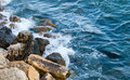 Sea coast with rocks blue wit shot from above Stock Images