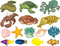 Sea creatures illustration of found in the Royalty Free Stock Images
