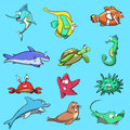 Sea Creatures Royalty Free Stock Photo