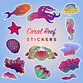 Sea creatures set. Painted Royalty Free Stock Photo