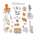 Sea elements isolated