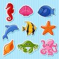 Sea fauna Royalty Free Stock Photo