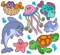 Sea fishes and animals collection Royalty Free Stock Photo