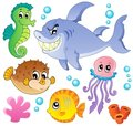Sea fishes and animals collection 4 Royalty Free Stock Photo