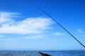 Sea fishing background Royalty Free Stock Image