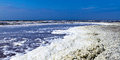 Sea foam on beach bloan onto the north coast near the harbor town of den helder in the netherlands a characteristic view a Stock Photography