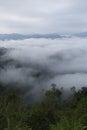 Sea fog pa nern tung kang kra jan thailand national park Royalty Free Stock Images