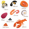 Sea food fish mussel shrimp oyster salmon lobster tuna red black caviar scallop set illustration Royalty Free Stock Photo
