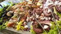 Sea Food - Octopus, Shrimps, Crabs, Shells