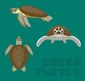 Sea Green Turtle Loggerhead Cartoon Vector Illustration