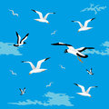 Sea gulls seamless Royalty Free Stock Photos