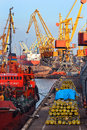 Sea harbor cranes at cargo port load bulk solids and pipes Royalty Free Stock Photo