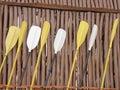Sea kayak paddles Royalty Free Stock Photo