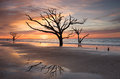 Sea levels rise sands shift maritime forests fall to elements botany bay plantation near charleston sc ocean has reclaimed part Stock Photos