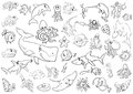 Sea life animals coloring page Royalty Free Stock Photo