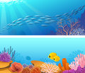Sea  life banner Stock Photography