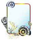 Sea life in frame with shells Stock Image