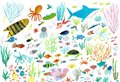 Sea life. Underwater world. Fish, jellyfish, sea bottom, algae, treasure.