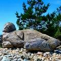 Sea Lion Sculpture Royalty Free Stock Photo