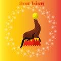 Sea Lion or seal balancing a ball