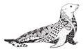 Sea lion zentangle stylized, seal, vector, illustration, freehan Royalty Free Stock Photo