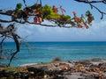 Sea in Madagascar Royalty Free Stock Image