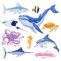 Sea and ocean animals set. Vector cartoon marine fish illustration, isolated on white background Royalty Free Stock Photo
